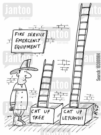 cat up tree cartoon humor: Fire Service Emergency Equipment