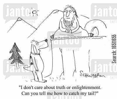 man on a mountain cartoon humor: 'I don't care about truth or enlightenment. Can you tell me how to catch my tail?'