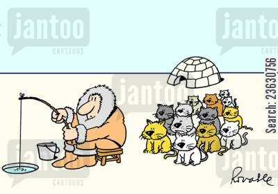 antarctic cartoon humor: Cats waiting for fish.