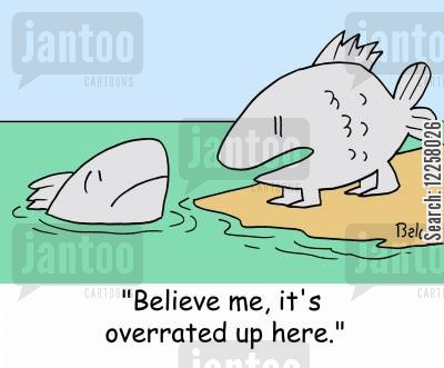 evolve cartoon humor: 'Believe me, it's overrated up here.'