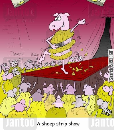 exotic dancers cartoon humor: A sheep shearing herself on stage - A sheep strip show