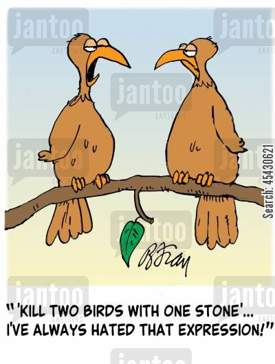 bird shootings cartoon humor: ' 'Kill two birds with one stone'...I've always hated that expression!'