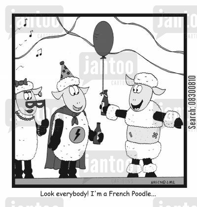 fancy dress parties cartoon humor: Look everybody! I'm a French Poodle