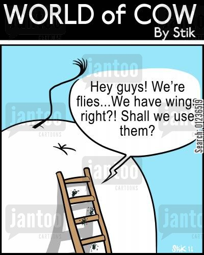 ability cartoon humor: 'Hey guys! We're flies...We have wings right?! Shall we use them?'