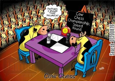 boardgame cartoon humor: COWS: Cow chess