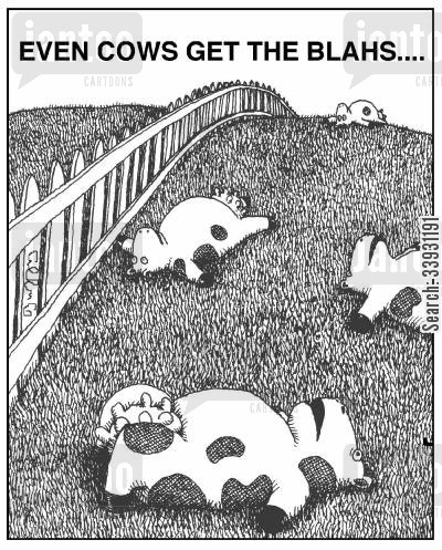 pasture cartoon humor: Even cows get the blahs....