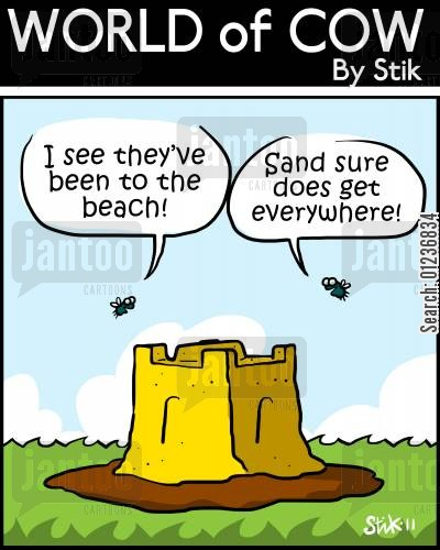 cow poos cartoon humor: 'Sand sure does get everywhere!'