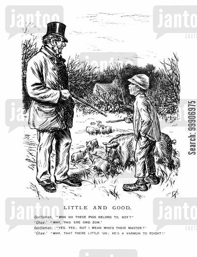 farm cartoon humor: A gentleman inquiring as to the owner of some pigs