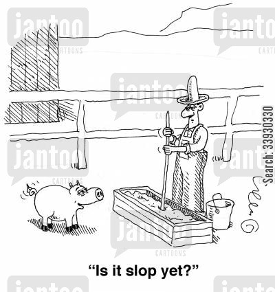 pig farmers cartoon humor: 'Is it slop yet?'