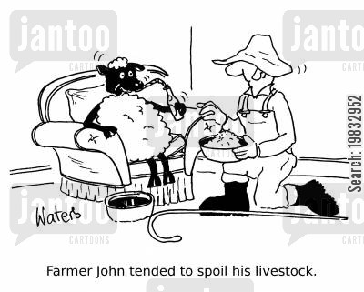 lambing cartoon humor: Farmer John tended to spoil his livestock.