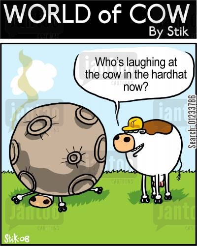 saftey cartoon humor: Who's laughing at the cow in a hardhat now?
