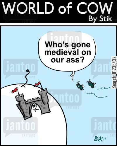 medieval history cartoon humor: Who's gone medieval on our ass?
