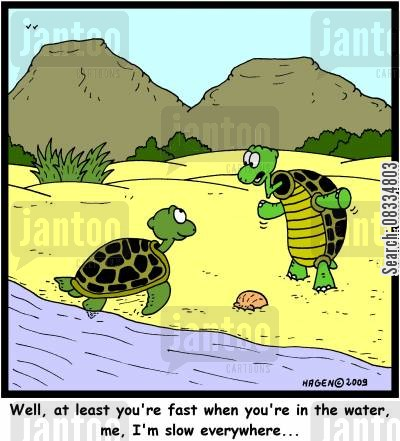 land animal cartoon humor: 'Well, at least you're fast when you're in the water, me, I'm slow everywhere...'