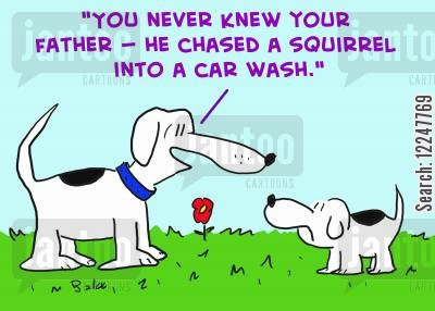 chasing squirrels cartoon humor: 'You never knew your father -- he chased a squirrel into a car wash.'
