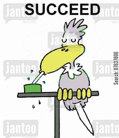 bird seed cartoon humor: Succeed.