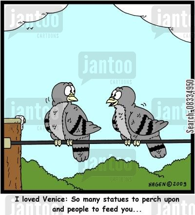 feeding pigeons cartoon humor: I loved Venice: So many statues to perch upon and people to feed you...