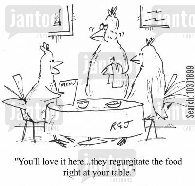 feeding habits cartoon humor: 'You'll love it here...they regurgitate the food right at your table.'