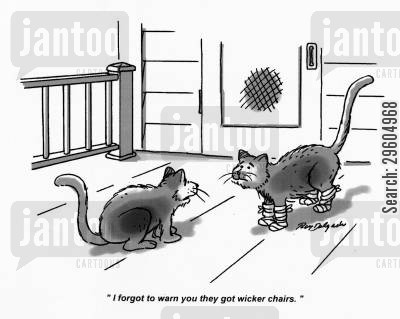 forgetful cartoon humor: 'I forgot to warn you they got wicker chairs.'