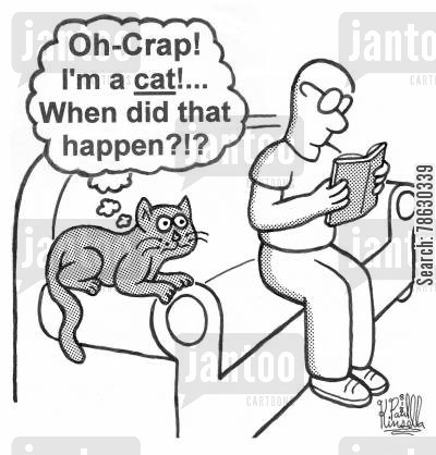 reincarnation cartoon humor: 'Oh-Crap! I'm a cat!... When did that happen?!?'