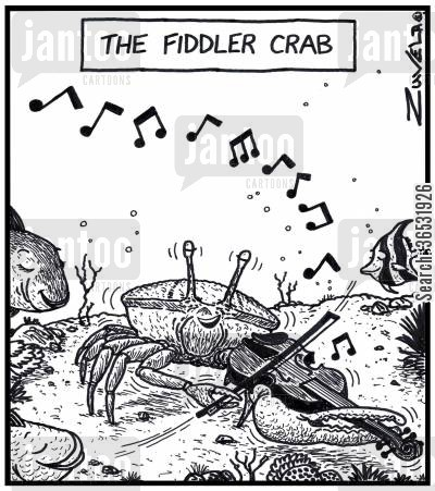 crustacean cartoon humor: The Fiddler crab.