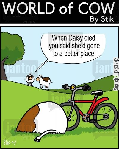 fatal injuries cartoon humor: When Daisy died, you said she'd gone to a better place!