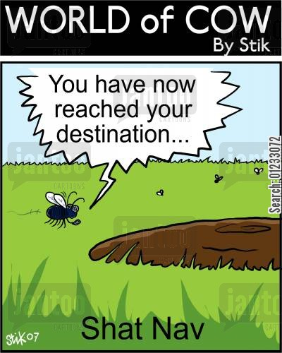 sat navs cartoon humor: You have reached your destination... Shat Nav