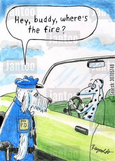 dalmatians cartoon humor: 'Hey buddy, where's the fire?'