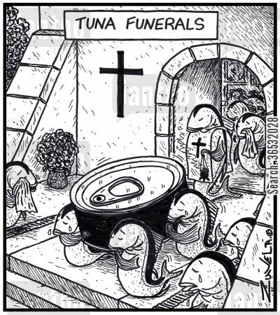 pall bearer cartoon humor: Tuna funerals.