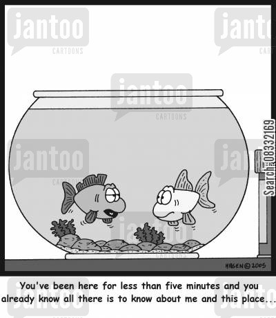 fishbowls cartoon humor: 'You've been here for less than five minutes and you already know all there is to know about me and this place...'