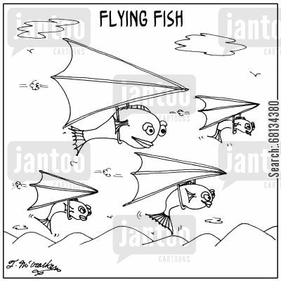 flying fishes cartoon humor: Flying Fish