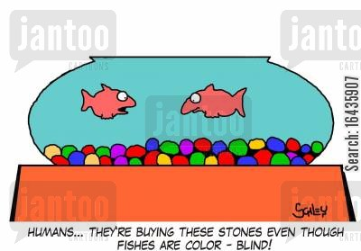 colour blind cartoon humor: 'Humans... they're buying these stones even though fishes are color-blind!'