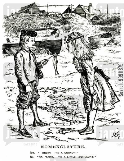 gurney spurgeon cartoon humor: Children arguing over the name of a fish