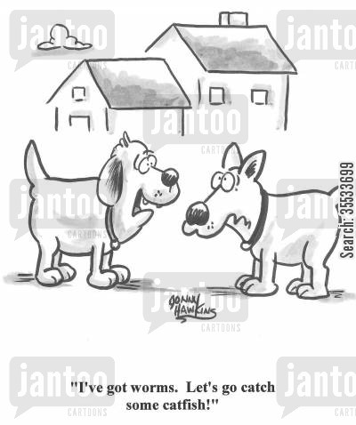 dog afflictions cartoon humor: Dog: 'I've got worms. Let's go catch some catfish!'