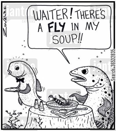 customer complaint cartoon humor: Customer: 'Waiter! There's a FLY in my soup!!'