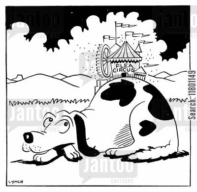 flea circuses cartoon humor: Dog and Flea Circus