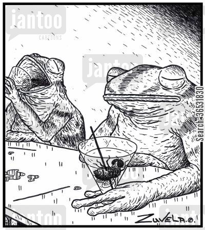 olive cartoon humor: Two frogs enjoying a Martini, with flies as their replacement to olives.