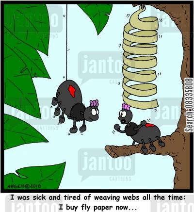fly catchers cartoon humor: 'I was sick and tired of weaving webs all the time: I buy fly paper now...'