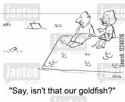 flood water cartoon humor: 'Say, isn't that our goldfish?'