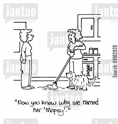 mops cartoon humor: 'Now you know why we names her 'Mospsy'.'