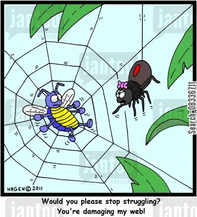 spider web cartoon humor: 'Would you please stop struggling? You're damaging my web!'