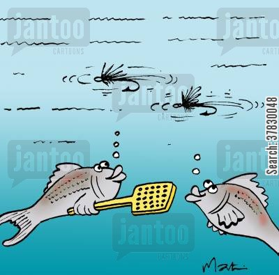 fishing line cartoon humor: Fly fishing.