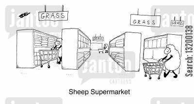 following the crowd cartoon humor: Sheep Supermarket