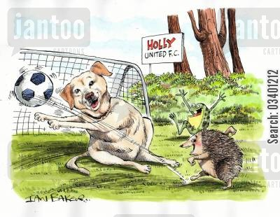 football clubs cartoon humor: Animals playing football.