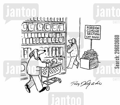 grocery cartoon humor: Foreign cuisine section - Cat food.