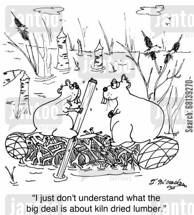 dam building cartoon humor: 'I just don't understand what the big deal is about kiln dried lumber.'