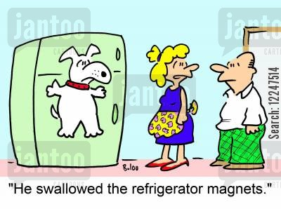 fridge magnet cartoon humor: 'He swallowed the refrigerator magnets.'