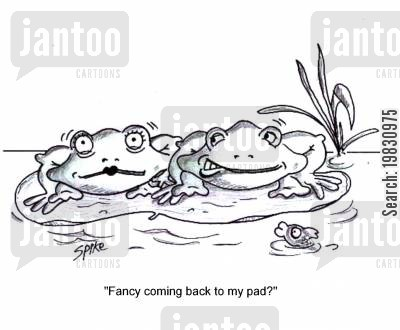 lily pad cartoon humor: 'Fancy coming back to my pad?'
