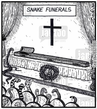 coffin cartoon humor: Snake funerals.