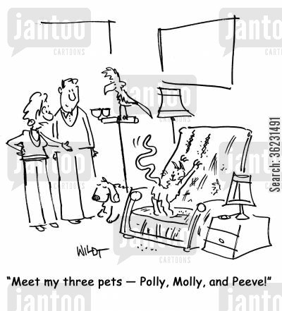 clawing cartoon humor: Meet my three pets
