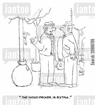 garden centre cartoon humor: 'The woodpecker is extra.'